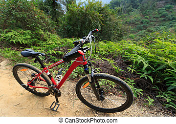 closeup of red mountain bike on forest trail