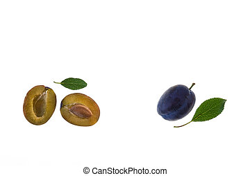 ripe damson plums isolated on white background with copy ...