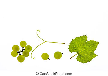 ripe Sauvignon Blanc grapes and leaf isolated on white...