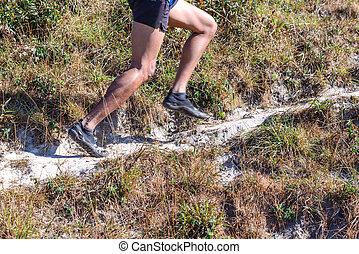 Closeup of runner's legs in nature trail running.