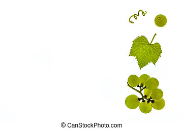 sauvignon blanc grapes with leaf isolated on white...