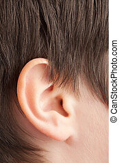 Closeup of teenager ear