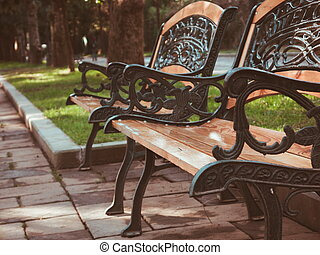 Closeup of the autumn bench in park