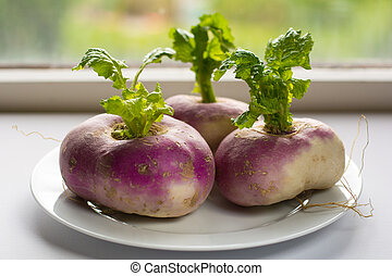 Closeup of three organic purple turnips with leaves on a white plate against a kitchen window
