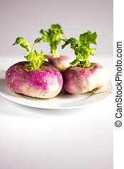 Closeup of three organic purple turnips with leaves on a white plate and background
