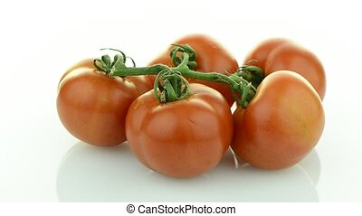 Closeup of tomatoes on the vine rotating isolated on white...