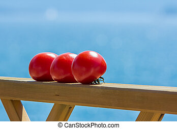 closeup of tomatoes ripening in the sun
