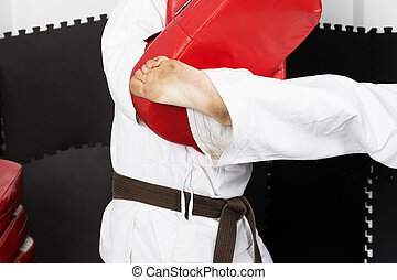 Closeup of two young men in kimono training martial arts, the teacher giving a forceful foot kick