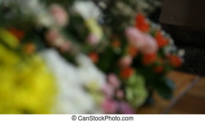 Closeup of various colorful flowers, camera motion from...