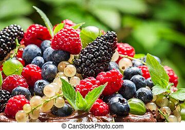 Closeup of wild fresh berry fruits