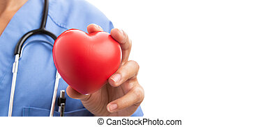 Closeup of woman cardiologist doctor hand holding red toy heart
