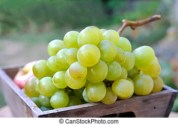 white grape - closeup on a white grape in a wooden tray