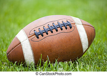 Closeup on american football in the grass