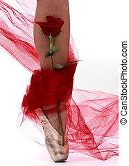 ballerina leg