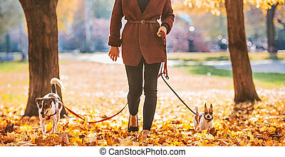 Closeup on happy young woman walking with dogs outd