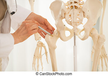 Closeup on medical doctor woman pointing on femur of human...