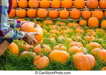 Closeup on young woman holding pumpkin