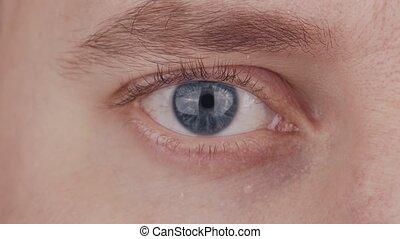 closeup, optometry., bleu, regarder, problèmes, vision, homme, macro., iris, mâle, eye., ophtalmologie, pupille, appareil photo, sourcil, close-up.