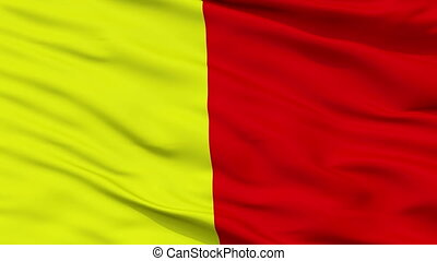 Closeup Orleans city flag, France - Orleans closeup flag,...