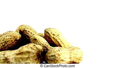 peanut rotating on isolated - closeup peanut rotating on...