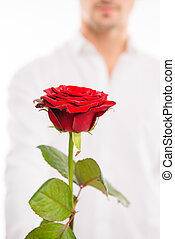 Closeup photo of a handsome man with a red rose