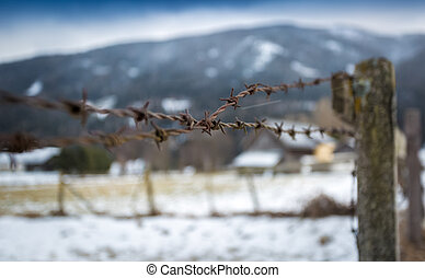barbed wire on wooden fence on field covered in snow