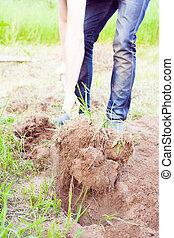 Closeup photo of man digging soil at garden