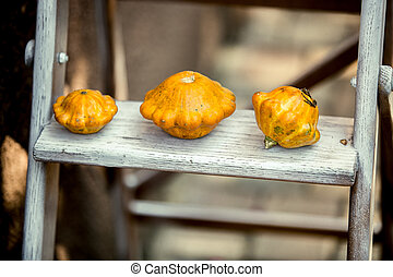 three small pumpkins lying on wooden stairs