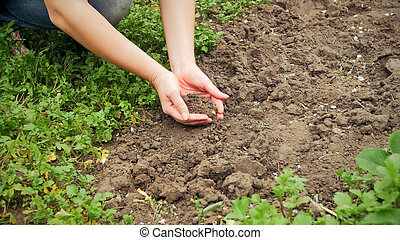 Closeup photo of young woman holding soil in hands