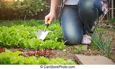Closeup photo of young woman with spade working in garden