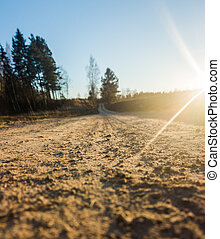 Closeup Photography of a Road in Sunny Winter Day
