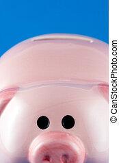 Closeup Piggy Bank