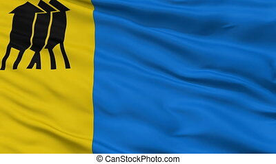 Closeup Porto Velho city flag, Brasil - Porto Velho closeup...