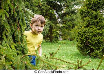 closeup, portrait, de, caucasien, deux, peu, frères, garçons, rire, dehors, dans parc, sur, jour été