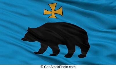 Closeup Przemysl city flag, Poland - Przemysl closeup flag,...
