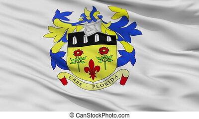 Closeup Quatre Bornes city flag, Mauritius - Quatre Bornes...