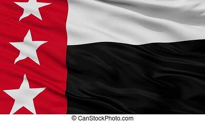 Closeup Republic of the Rio Grande city flag, USA - Republic...