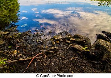 closeup, rivage lac