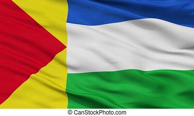 Closeup Rivas Davila city flag, Venezuela - Rivas Davila...
