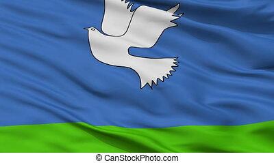 Closeup Samtredia Municipality flag, Georgia