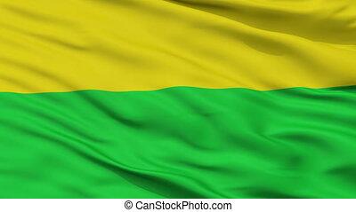 Closeup San Carlos city flag, Costa Rica - San Carlos...