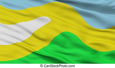 Closeup San Jose del Guaviare city flag, Colombia - San Jose...
