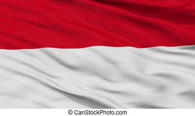 Closeup San Ramon city flag, Costa Rica - San Ramon closeup...
