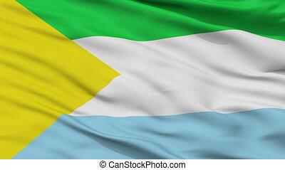 Closeup San Vicente de Caguan city flag, Colombia - San...