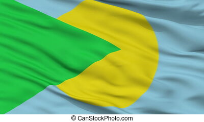 Santa Barbara closeup flag, city of Costa Rica, realistic animation seamless loop - 10 seconds long