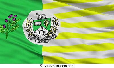 Closeup Saskatoon city flag, Canada - Saskatoon closeup...