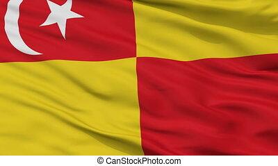 Closeup Selangor city flag, Malaysia - Selangor closeup...