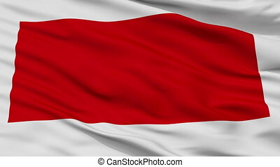 Closeup Sharjah city flag, United Arab Emirates - Sharjah...