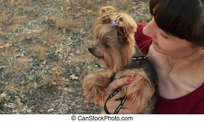 Closeup shot of a smiling caucasian girl and small dog yorkshire terrier posing outdoors.