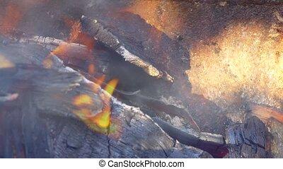 Closeup shot of camping fire fire wood charcoal